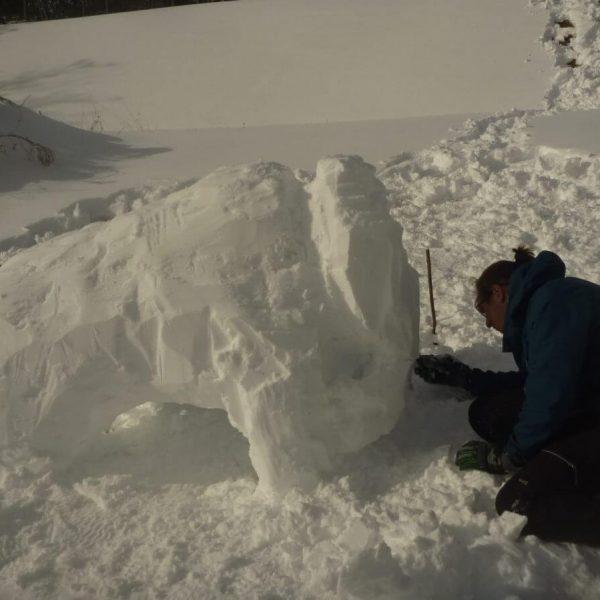 Aventure préhistorique dans les Pyrénées-Orientales