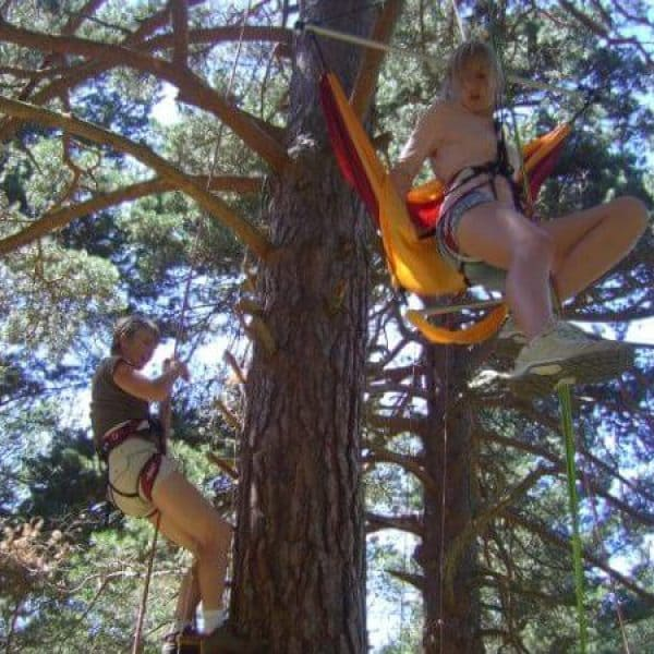 Grimpe dans les arbres La Quillane