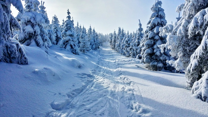 vacances de la Noel sur les Pyrenees-Orientales